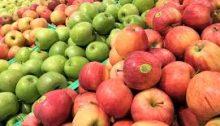 Il tempo delle mele