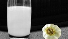 Latte d'aglio, numerosi benefici per la salute.